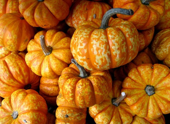 How To Select, Prepare, and Cook Winter Squash