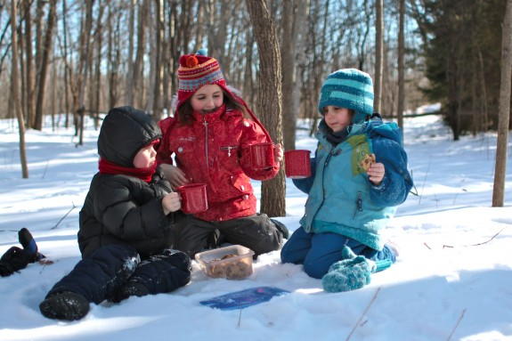 Ideas and Tips for a Winter Picnic in the Snow