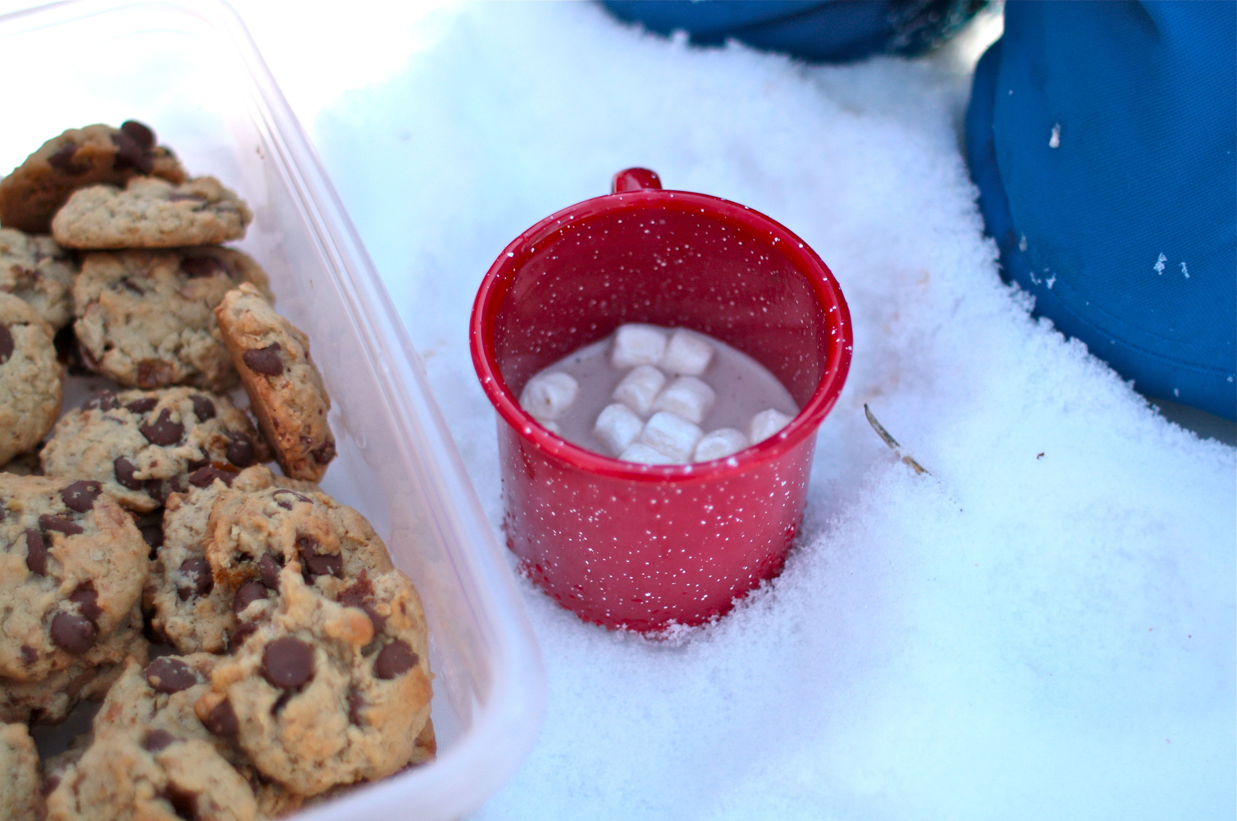 7776539f5f4f Ideas and Tips for a Winter Picnic in the Snow