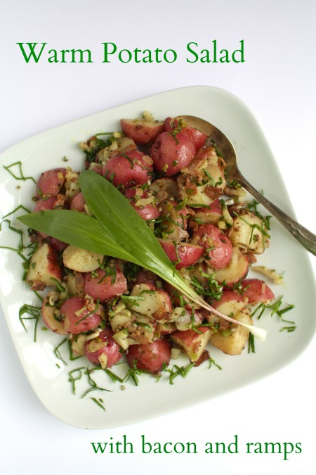 potato salad with bacon 5 0 from 3 reviews print recipe type salad ...