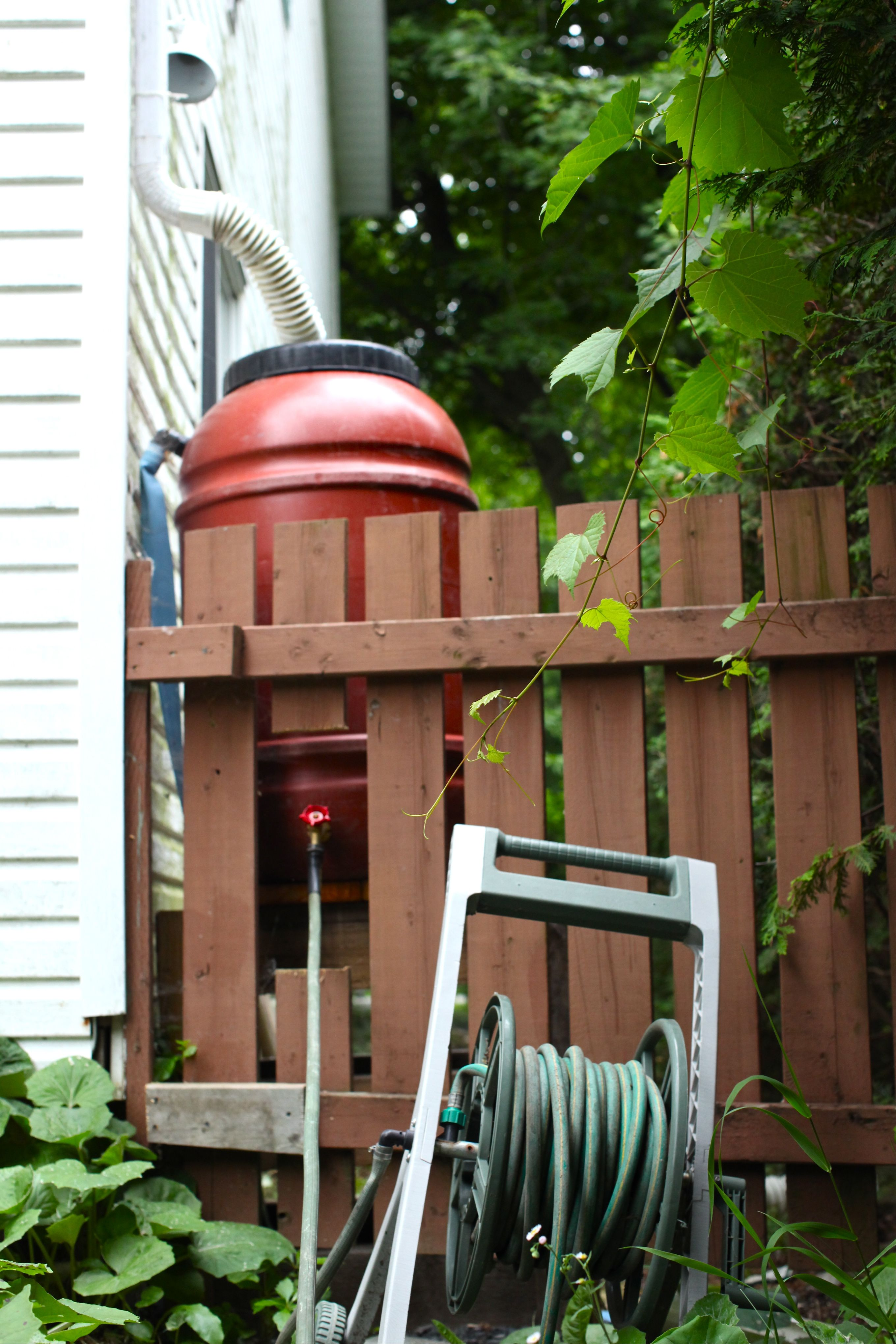 rain barrels  how we installed ours and other tips