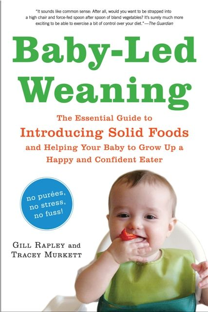Baby Food Weaning Guide