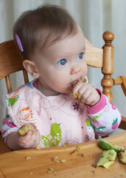 baby led feeding blw with clara a 10 month update simple bites
