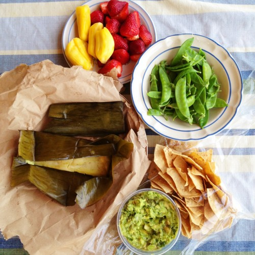 Mexican market picnic