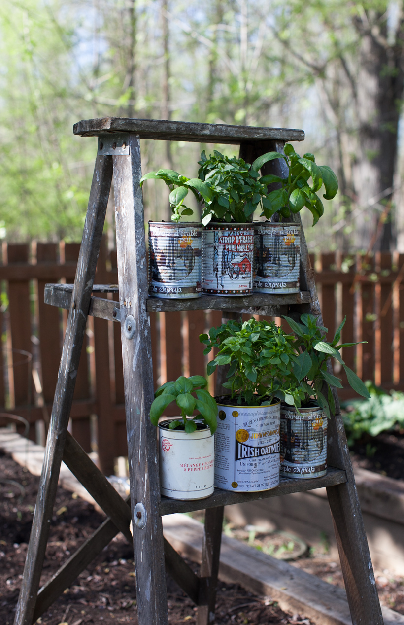 Recycled Herb Planters And An Upcycled Wooden Ladder
