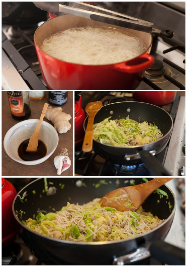 Chinese Chicken & Cabbage Noodles on www.simplebites.net #dinner #familyfriendly #fast
