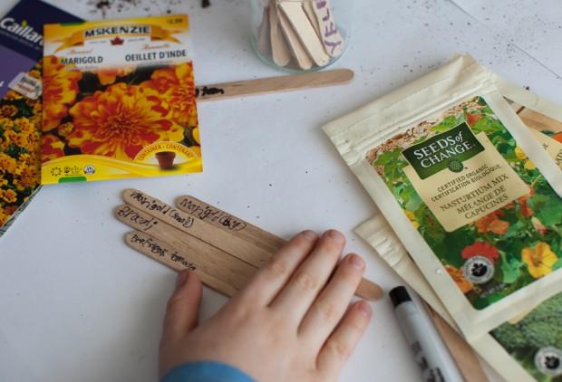 Sowing seeds | Simple Bites