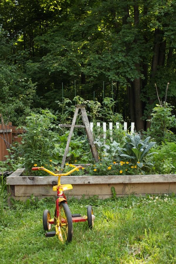 A Garden Tour | Simple Bites  bike-1