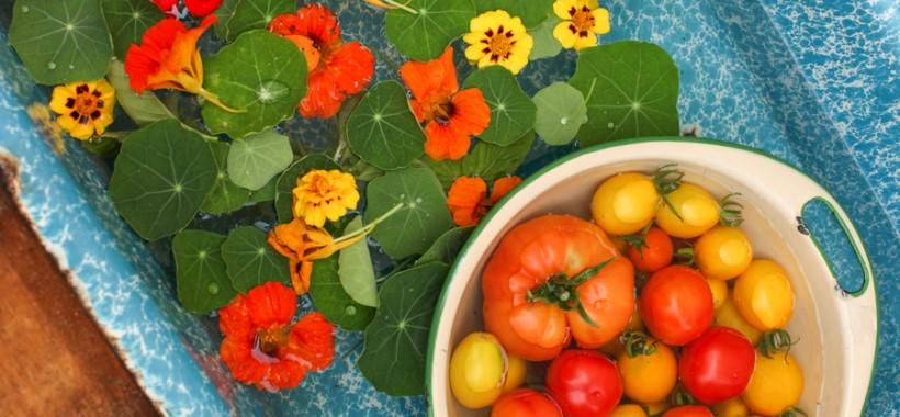 Tomato Nasturtium Salad with Dates and Pistachios | Simple Bites #recipe #salad #vegetarian #vegan