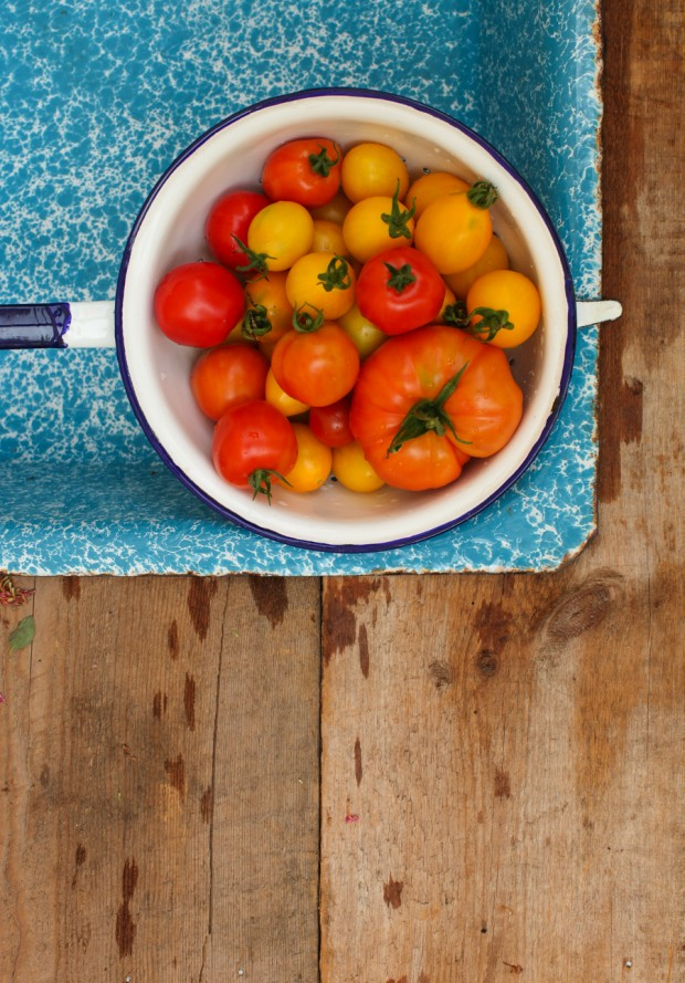 homegrown tomatoes