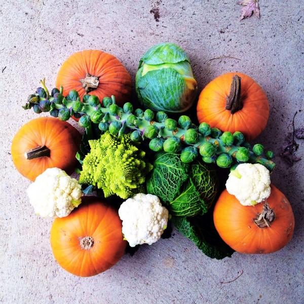 Coconut Curried Pumpkin with Cinnamon Rice   Simple Bites {vegan}