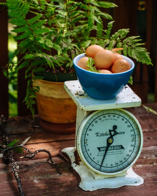 Brown Eggs & Jam Jars cookbook