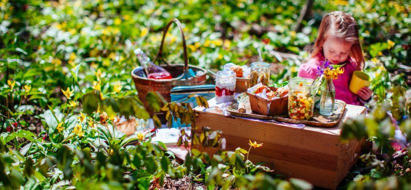 Clara picnic