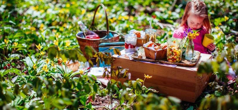 Clara's spring picnic