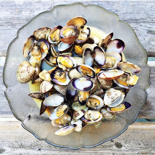 Clams in broth || Simple Bites