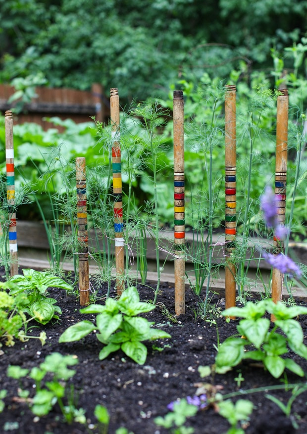 Tour the Simple Bites backyard garden in spring: staking