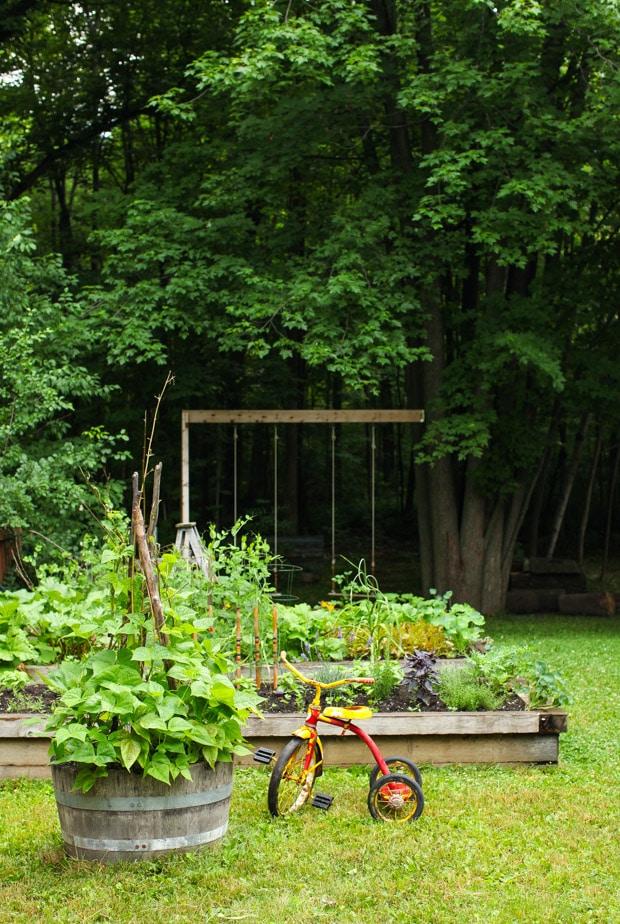 Tour the Simple Bites backyard garden in spring