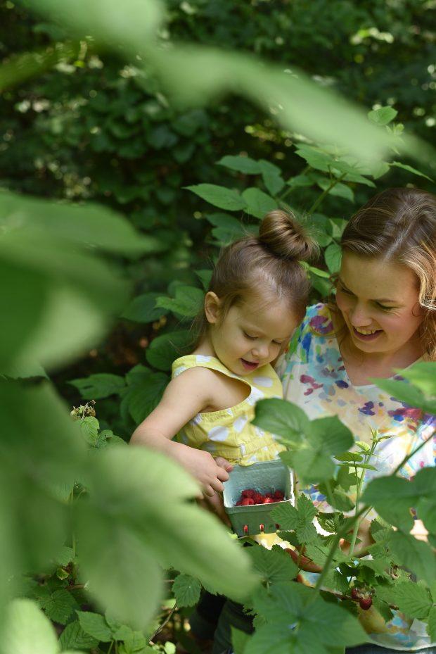 Aimee and Clara picking raspberries