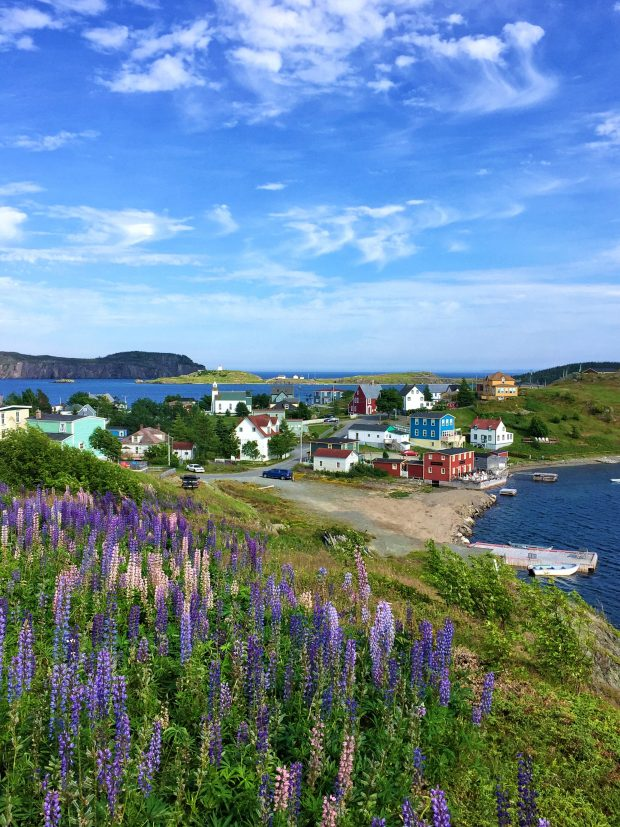 Trinity, NL || Family travel in Newfoundland, Canada | Simple Bites
