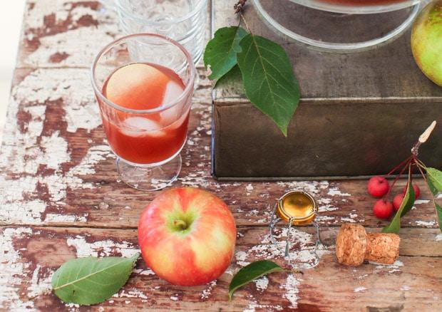 Sparkling Vanilla-Scented Apple Cider Punch   Simple Bites
